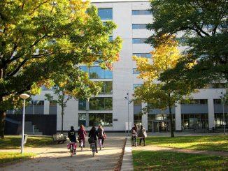 Program Beasiswa TIAS School for Business and Society